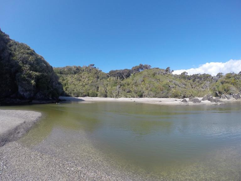Ship Creek Walks