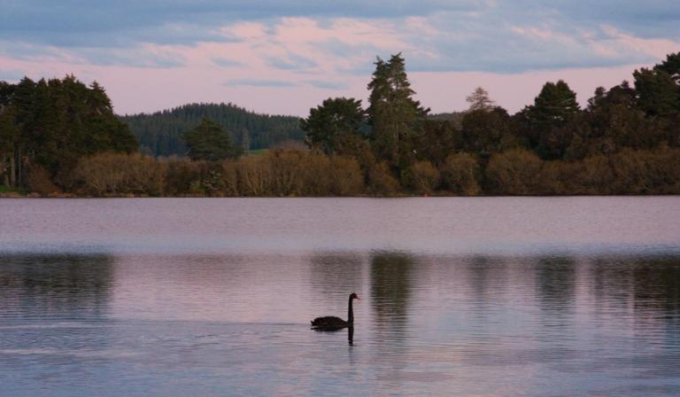Lake Okaro
