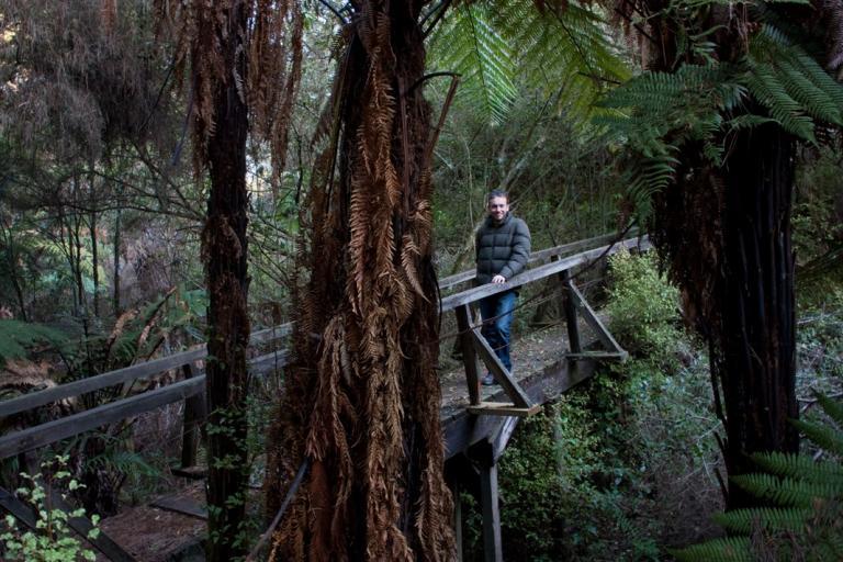 Waikare Thermal Valley Walkway