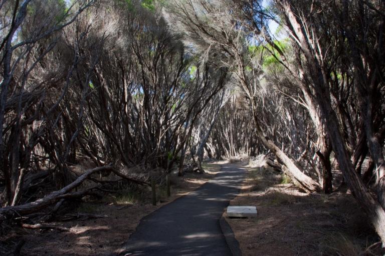 Ben Boyd National Park